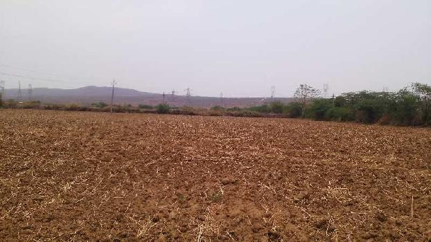 agriculture land for sell in salem pura dausa