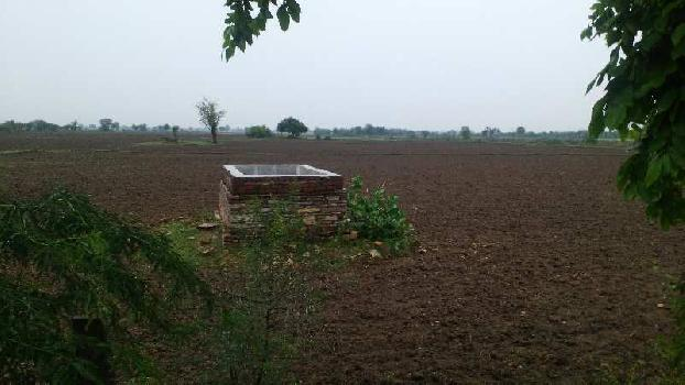 agriculture land for sell in khanwas dausa