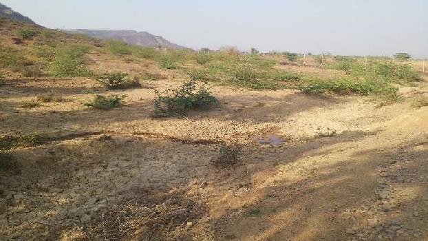 agriculture land for sell in kanpuriya dausa