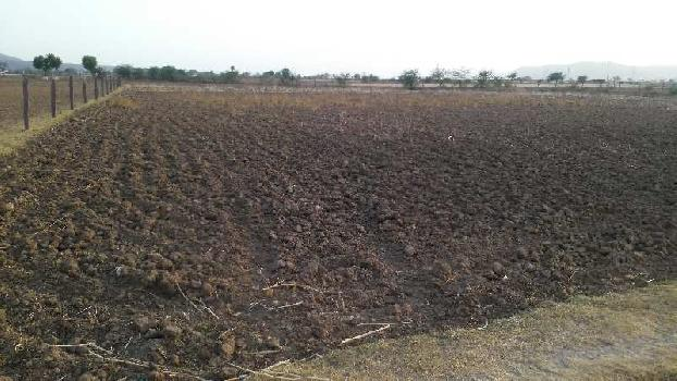 agriculture land for sell in toonga dausa