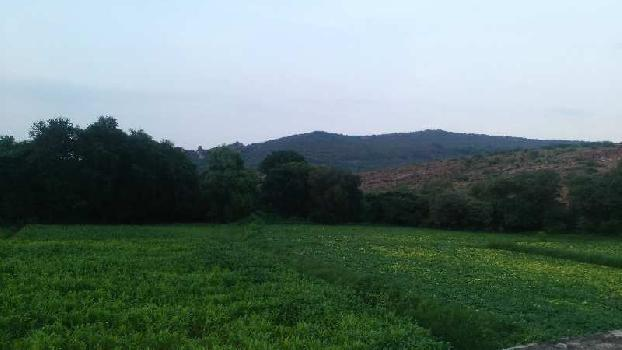 agriculture land for sell in baniyans bhilwara
