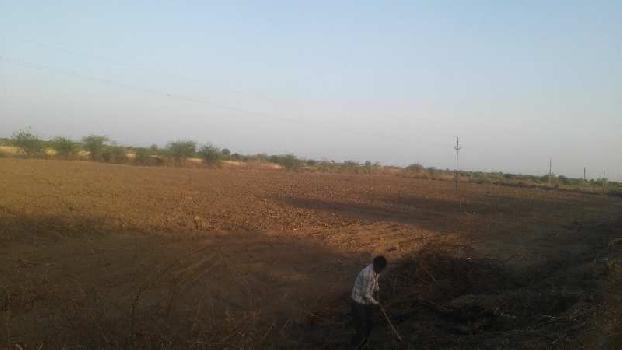 agriculture land for sell in suwana bhilwara