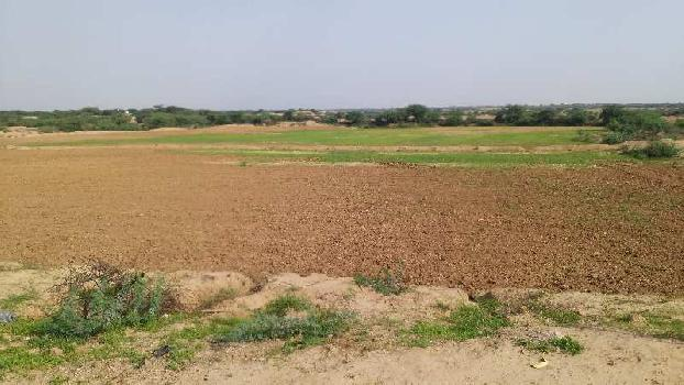 agriculture land for sell in barundani bhilwara