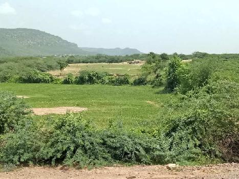agriculture land for sell in gangarar bhilwara