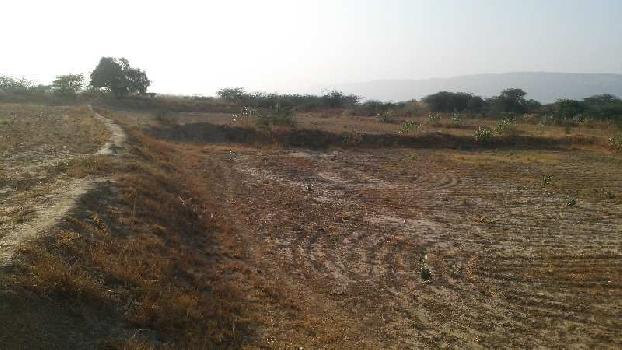 agriculture land for sell in bardod bhilwara