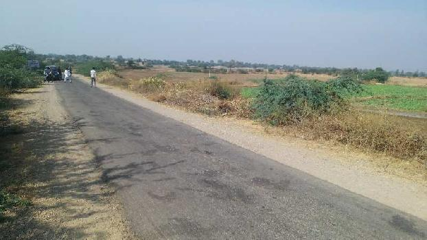 10 bigha farm land for sell in balapura lakheri