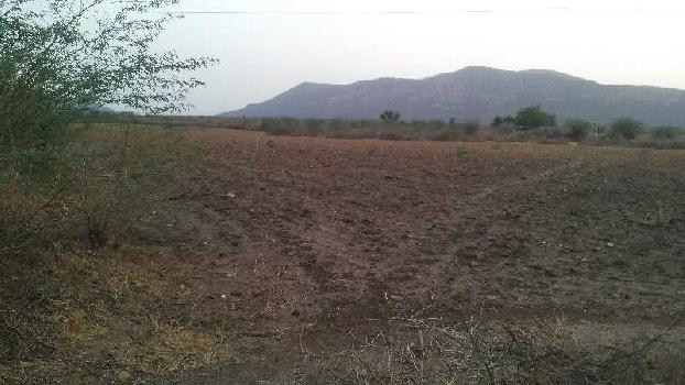 50 bigha farm land for sell in bishanpura