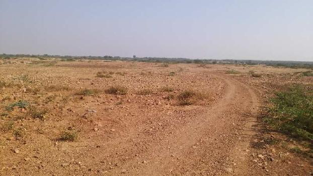 13 bigha fram land in lakheri bundi