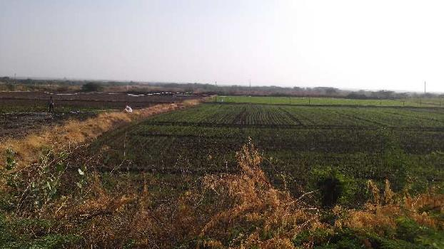 7 bigha sc. farm land for sell in notada bundi