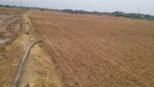 21 bigha sc. land for sell in malakpura bundi