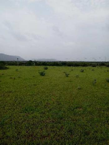 12 bigha sc. land for sell in laxmipura village bundi