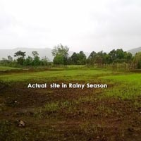 Lucrative investment in Roha with Agri land +NA Farmhouse plot @ Rs.91 sqft
