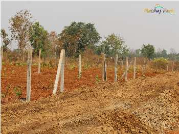 Exceptional & Prominent Agriculture plot Project