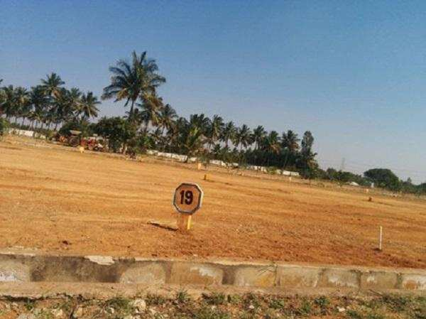 5 Biswa Multi Plots for Sell