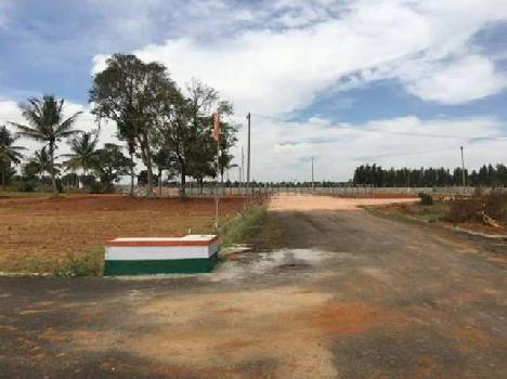 5 Biswa Drive in Plots for Sell