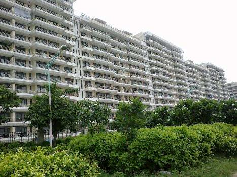 2 BHK Flats & Apartments for Sale in Tdi City, Kundli