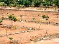 Residential Plot For Sale In Sonipat