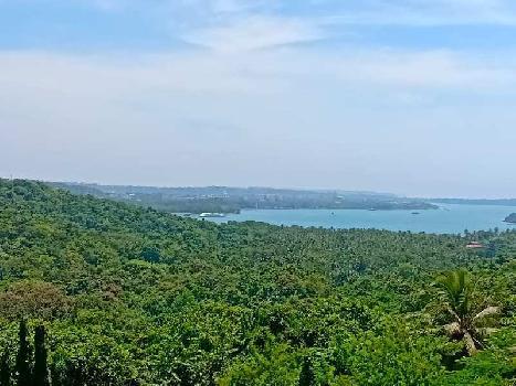 4 BHK Penthouse For Sale In PDA Colony, Porvorim, Goa