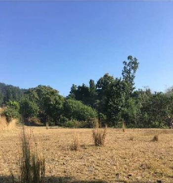 Thano Greens farm plots