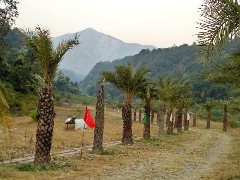 NRI Agricultural farm land