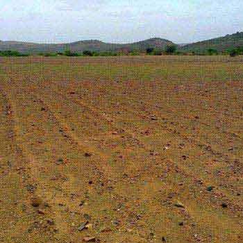 Residential Plot for Sale in Jawahar Colony