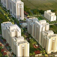 2 BHK + Study Roomv  Luxury Apartment For Sale IN Gurgaon Sohna Road Sector -2