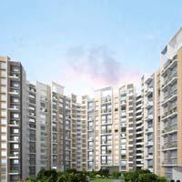 654 Sq. Feet Flats & Apartments for Sale in Badlapur