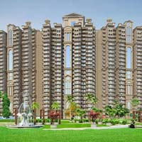 2 BHK+Store Apartment For Sale In Noida Sec-118, Near To Metro Station