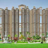 2 BHK+Study Apartment For Sale In Noida Sec-118, Near To Metro Station