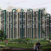3 BHK+Servant Room Apartment For Sale In Noida Sec-118, Near To Metro Station