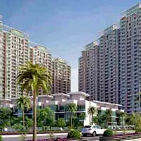4 BHK Apartment For Sale In Noida Sector- 79