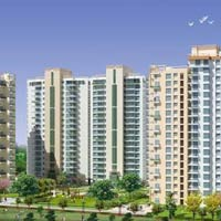 3 BHK Apartment For Sale In Noida Sector- 79
