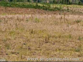 Road Facing Land for sale
