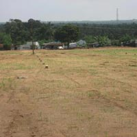 1401sq.ft.Residential Plot for Sale at KrishnaGiri