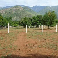 1350sq.ft.residential Plot for Sale At Krishnagiri