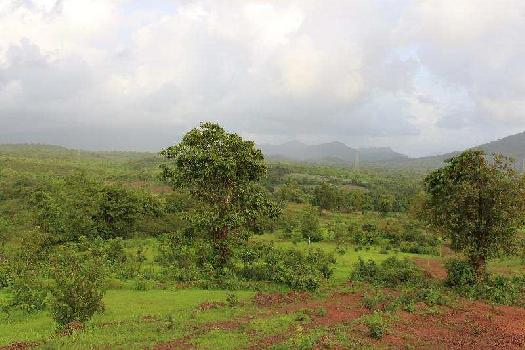 Residential Plot for Sale in North Goa, Goa