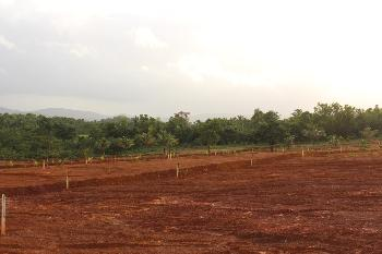 Residential Land for Sale in Sindhudurg