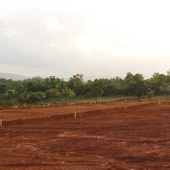 Residential Plot for Sale in Dodamarg, Sindhudurg