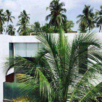 2 BHK Individual House for Sale in Candolim, Goa