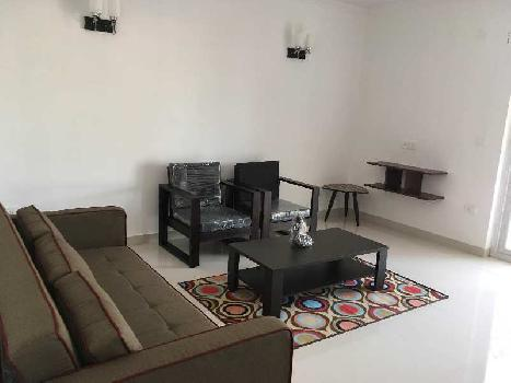 Fully Furnished 1 BHK Apartment At Anjuna Goa