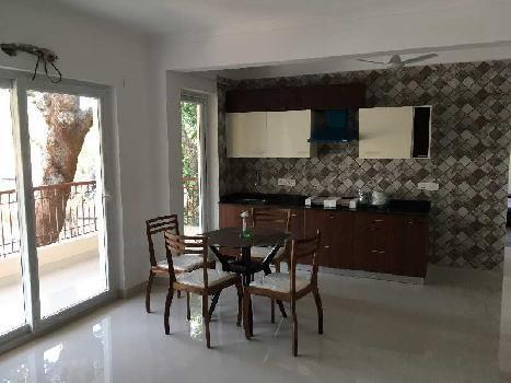 Fully Furnished 1 BHK Apartment At Anjuna Goa