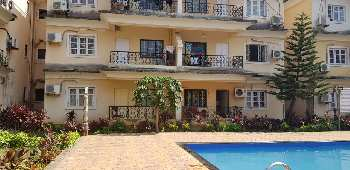 Fully Furnished 1  BHK Apartment At Calangute Goa