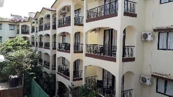 1 BHK Exclusive Brand New Apartment For Sale At Assagao Goa