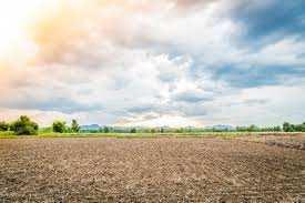 Residential Plot For Sale In Bharat Nagar, Bhiwani