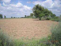 Land Free Plot For Sale In Gwar Factory Bhiwani