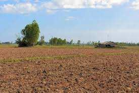 Commercial Cum Residential Plot For Sale In Rohtak Road, Bhiwani