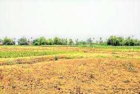 Farm House Land For Sale In Loharu Road, Bhiwani