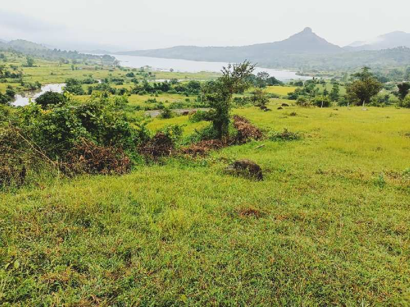15000 Sq.ft. Residential Plot for Sale in Lonavala, Pune