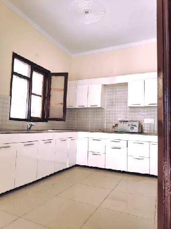 3 BHK Flats & Apartments for Rent in Dhakoli, Zirakpur