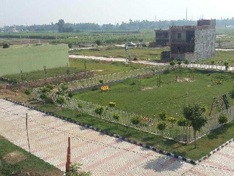 110 Sq. Yards Residential Plot for Sale in Punjab